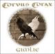 Corvus Corax :Gimlie