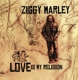 Marley,Ziggy :Love Is My Religion
