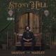 Marley,Damian Jr.Gong :Stony Hill (Ltd.Deluxe Gatefold Coloured 2LP-Set)