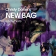 Christy Doran's New Bag :Elsewhere