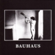 Bauhaus :In The Flat Field