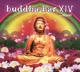 Buddha Bar Presents/Various :Buddha-Bar XIV