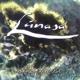 Lunasa :Otherworld