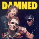 Damned,The :Damned Damned Damned (Art Of The Album-Edition)