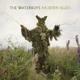 Waterboys,The :Modern Blues (2LP+180g+MP3+Bonustrack)