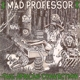 Mad Professor :The African Connection