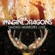 Imagine Dragons :Smoke+Mirrors Live (Toronto 2015) (DVD)