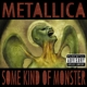 Metallica :Some Kind Of Monster