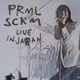 Primal Scream :Live in Japan