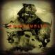 OneRepublic :Native (Gold Edt.)