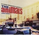 Animals,The :San Francisco Nights