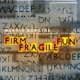 Busstra,Marnix :Firm Fragile Fun