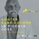 Sommer,Günter :Le Piccole Cose-European Jazz Legends Vol.9