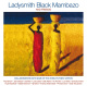 Ladysmith Black Mambazo :And Friends