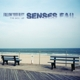 Senses Fail :Follow Your Bliss: The Best Of