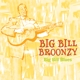 Broonzy,Big Bill :Big Bills Blues