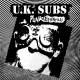 UK Subs :Punk Essentials CD/DVD