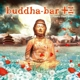 Buddha Bar Presents/Various :Buddha-Bar XIII