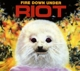 Riot :Fire Down Under Reissue