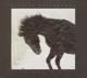 16 Horsepower :Live March 2001
