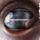 Filter :Crazy Eyes (2LP)