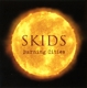 Skids,The :Burning Cities