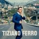 Ferro,Tiziano :Il Mestiere Della Vita
