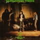 Screaming Trees :Even If & Especially When