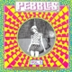Various :Pebbles #5: Various Morons
