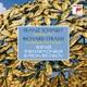 Wiener Philharmoniker/Bychkov,Semyon :Sinfonie 2/Intermezzo op.7: Träumerei am Kamin