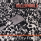 Bay City Rollers :Rollerworld-Live At The Budokan,Tokyo 1977