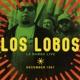 Los Lobos :La Bamba Live Devember 1987