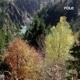 Pole :Wald (2LP)