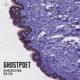Ghostpoet :Shedding Skin (LP+CD)