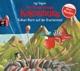 Schepmann,Philipp :Kleine Drache Kokosnuss-Vulkan-Alarm Auf