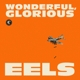 Eels :Wonderful,Glorious