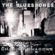 Bluesbones,The :Chasing Shadows