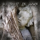 No Trust In Dawn :As We Fall