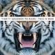 30 Seconds To Mars :This Is War (LP+Bonus CD)