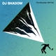 DJ Shadow :The Mountain Will Fall (2LP/Gatefold+MP3)