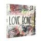 Mother Love Bone :On Earth As It Is (Ltd.Edt.Vinyl Box Set)