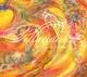 Zorn,John :Pellucidar-A Dreamers Fantabula