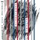Harvey,Mark & The Aardvark Jazz Orchestra :Democratic Vistas