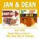 Jan & Dean :Surf City/Dead Man's Curve The New Girl In School
