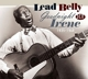 LeadBelly :Goodnight Irene 1939-1948