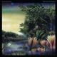 Fleetwood Mac :Tango In The Night (Remastered)