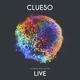 Clueso :Stadtrandlichter Live (2LP+MP3)