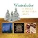 Di Meola,Al/James,Boney/Spyro Gyra :Winterludes