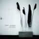 Poppy Ackroyd :Feathers