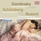 Kushpler,Zoryana/Linos Ensemble :Kammersinfonie/6 Gesänge/Berceuse elegiaque